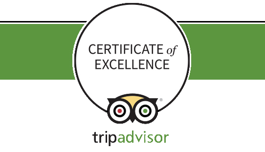 logo pub crawl certificate of excellence ta